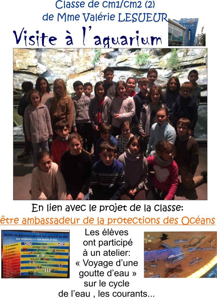Classe CM1/CM2(2) de Mme LESUEUR