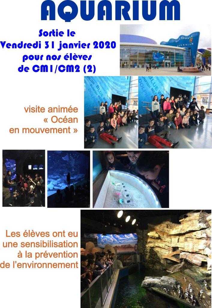 Sauvegarde_de_aquarium-707×1024
